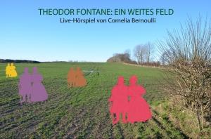 Flyer Theodor Fontane Ein weites Feld